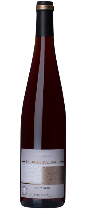 Pinot noir Granit de la Vallée