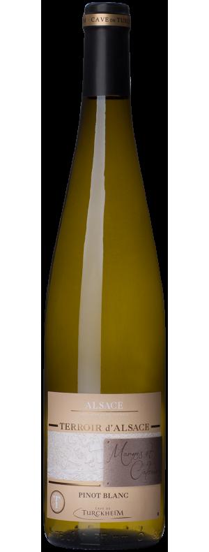 Pinot blanc Marnes et Calcaires