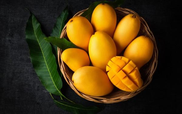 Verrine Mangue Coco